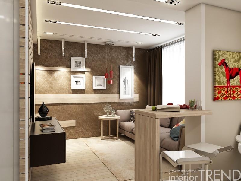 квартира студия 1 комнатная дизайн фото